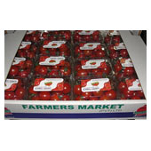 Cherry Punnets Large Box