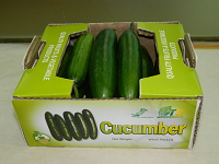 Cucumber Small Pack