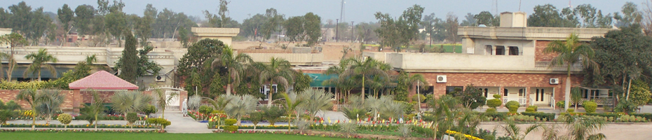 Mian Shadi Agriculture Farms Banner
