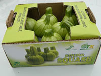 Round Squashes Small Pack