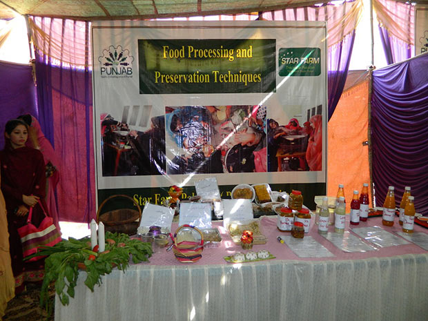 Preservation of fruits and vegetable stall at ceremony
