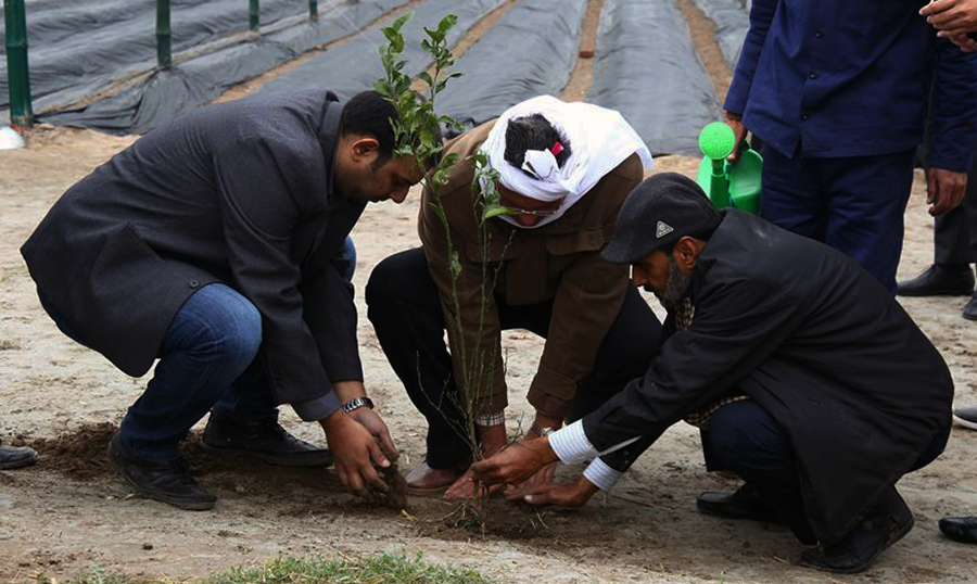 Mr. Pervaiz Akhtar planting Lemon plant at farm inauguration