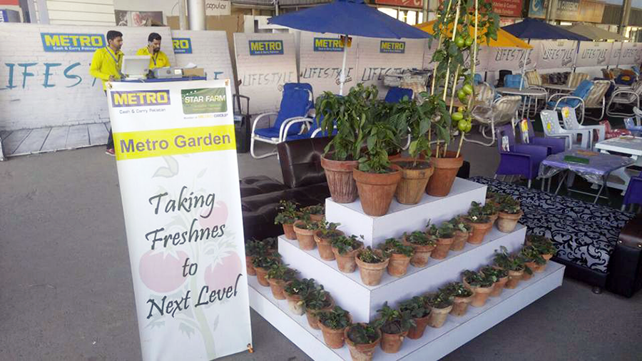 Display of Plants at Metro CC Thokar Store